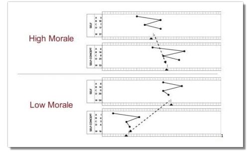 PI Behavioral Assessment ▷ Predictive Index Test & Score Explained